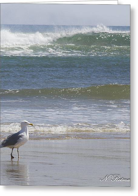 Gull With Parallel Waves Greeting Card