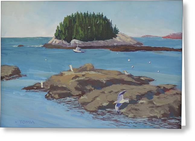 Gulls At Five Islands Greeting Card
