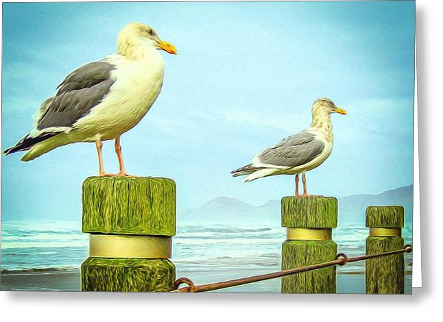 Gulls Greeting Card by Denise Darby