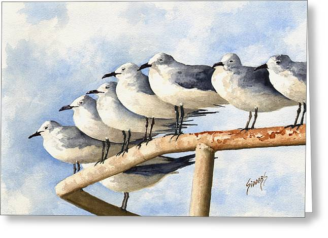 Gulls Greeting Card by Sam Sidders