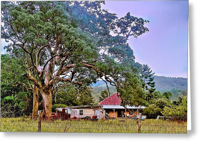 Greeting Card featuring the photograph Gumtree Gully by Wallaroo Images