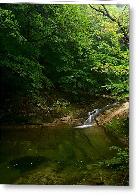 Gyeryongsan Stream And Pool Greeting Card