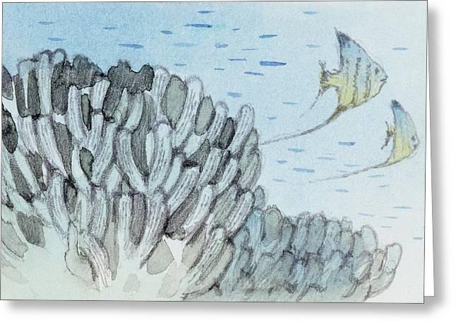 Gyroporella Greeting Card by Deagostini/uig