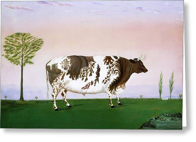 H. Call, Prize Bull, American, Active 1876 Greeting Card by Litz Collection