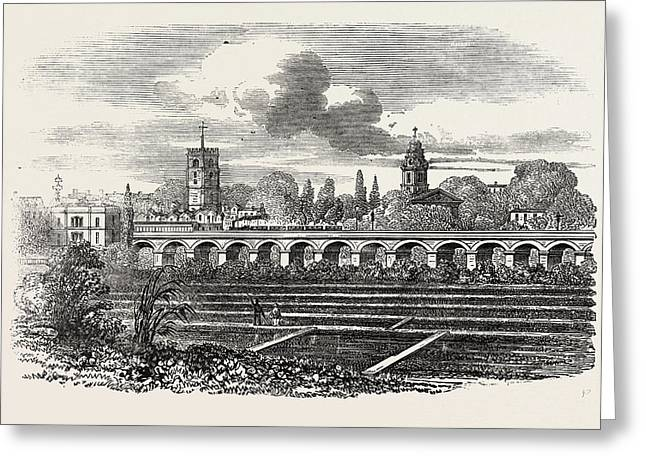 Hackney Station, And Watercress Plantation Greeting Card by English School