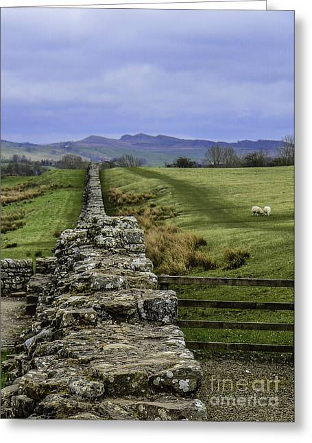 Hadrian's Wall Greeting Card by Mary Carol Story