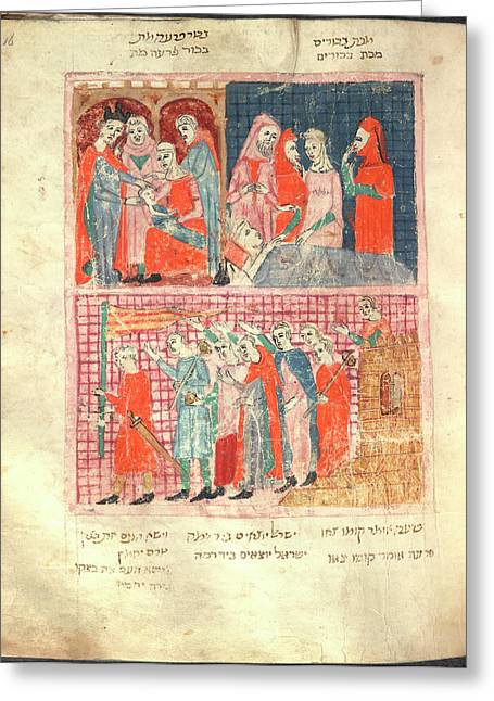 Haggadah Pesach Greeting Card by British Library