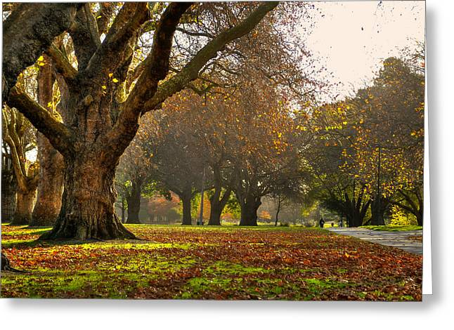 Hagley In Autumn Greeting Card