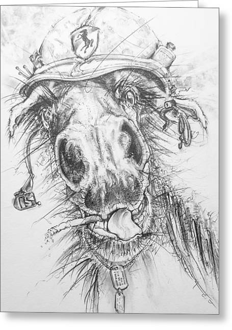 Hair-ied Horse Soilder Greeting Card by Scott and Dixie Wiley