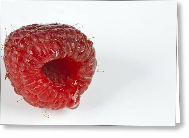 Hairy Raspberry Greeting Card by John Crothers