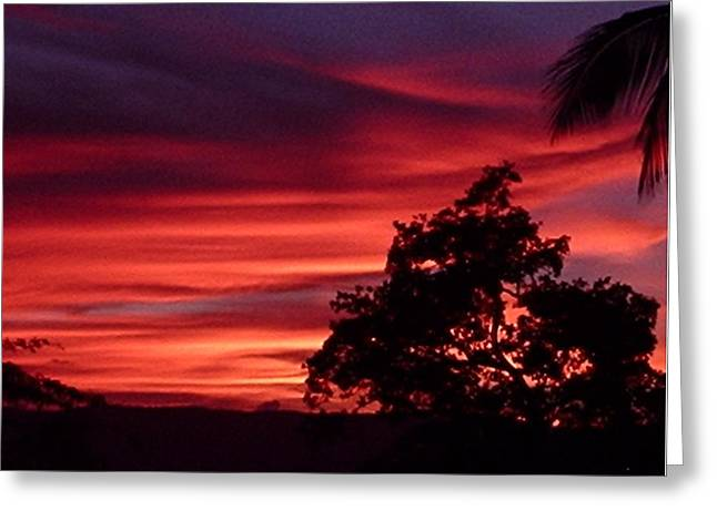 Haiti - Red Sunset Greeting Card by Marianne Miles