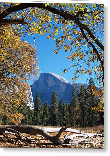 Half Dome In Yosemite Greeting Card by Alex Cassels
