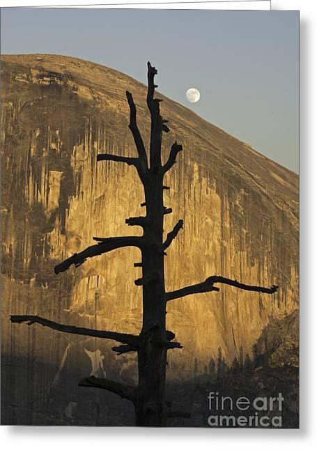 Half Dome With Full Moon Greeting Card
