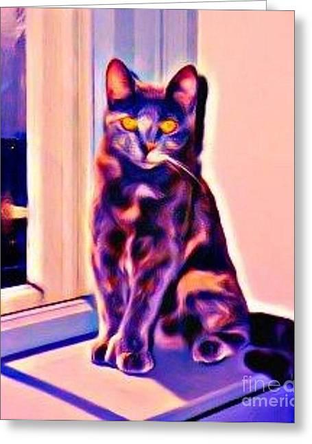 Halifax Cat Greeting Card by John Malone