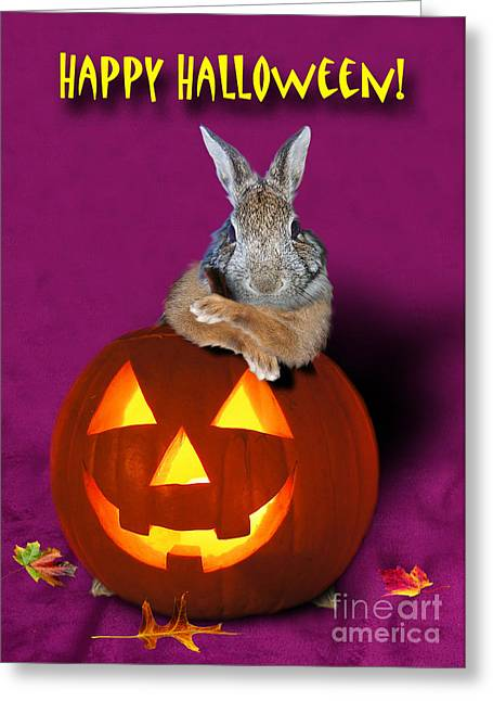 Halloween Bunny Rabbit Greeting Card by Jeanette K