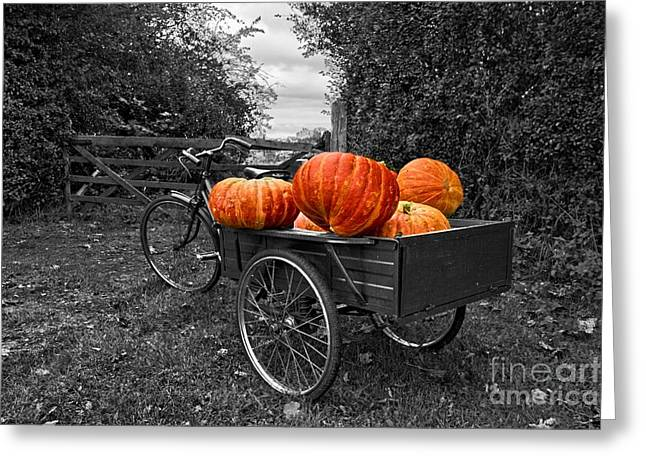 Halloween Harvest Greeting Card by Nick Wardekker