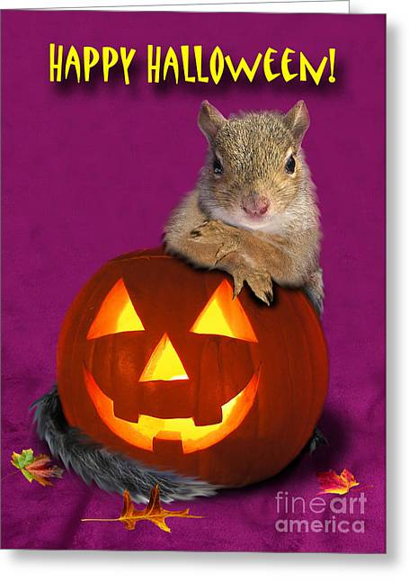 Halloween Squirrel Greeting Card by Jeanette K