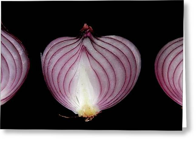 Halved Red Onions Greeting Card by Thomas Fester