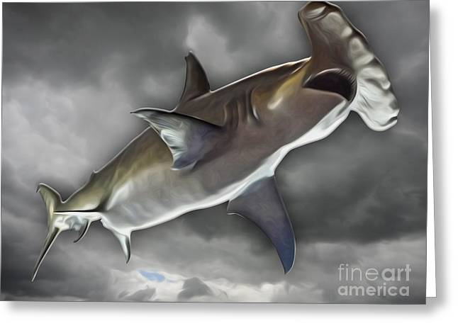 Hammerhead Greeting Card by Gregory Dyer