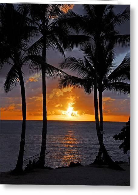 Hammock Sunset Greeting Card by Lynn Bauer