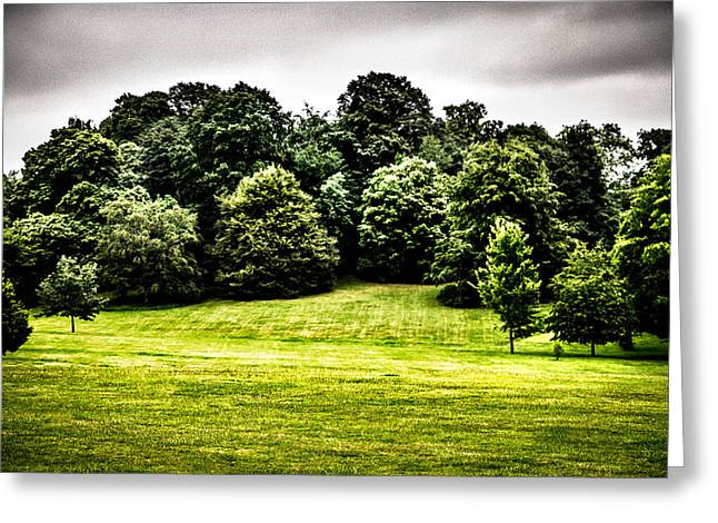 Hampstead Heath Greens Greeting Card by Lenny Carter