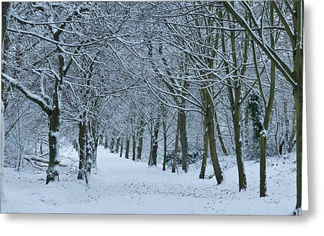 Hampstead Heath In Winter, North Greeting Card by Panoramic Images