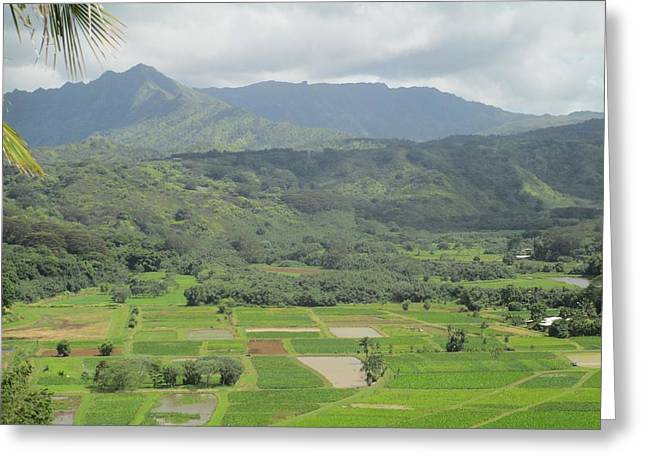 Greeting Card featuring the photograph Hanalei by Alohi Fujimoto