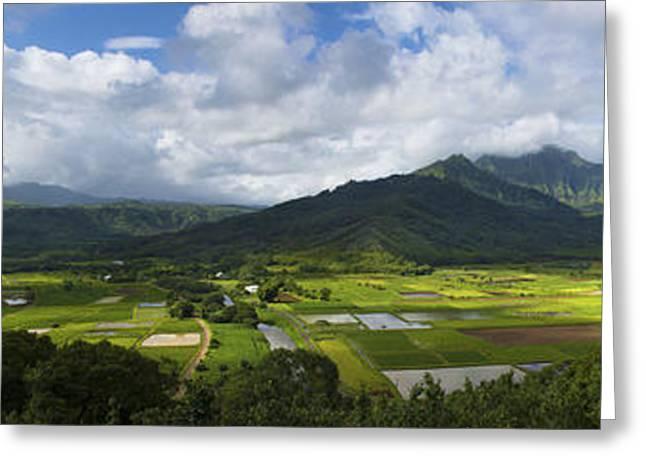 Hanalei Valley Panorama - Kauai Hawaii Greeting Card by Brian Harig