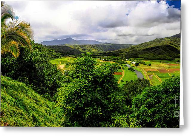 Hanalei Valley Greeting Card