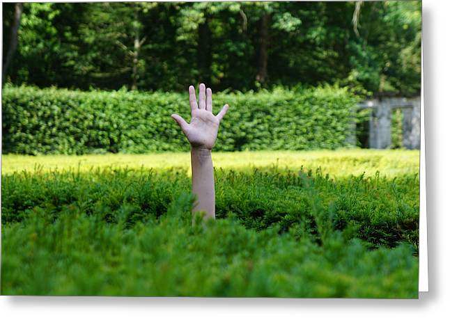 Hand Above Maze, Chenonceau, France Greeting Card
