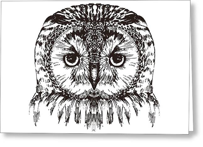 Hand Drawn Owl Portrait, Vector Greeting Card