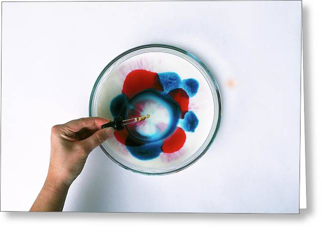 Hand Dropping Detergent In Dish Greeting Card by Dorling Kindersley/uig