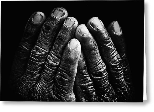 Old Hands With Wrinkles Greeting Card