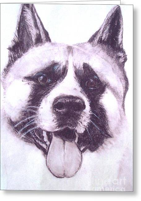Handsome Akita Greeting Card