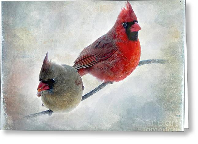 Handsome Couple IIi Greeting Card by Debbie Portwood