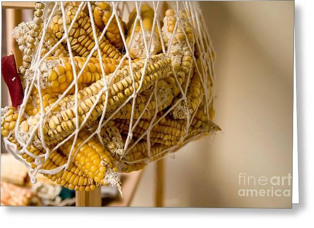 Hanged Dry Organic Corns In A Net Greeting Card