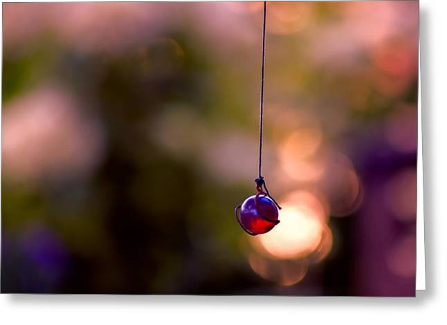 Hanging By A Thread Greeting Card by Bonnie Bruno