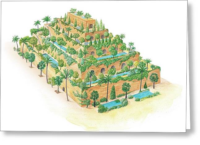 Hanging Gardens Of Babylon Greeting Card by Gary Hincks