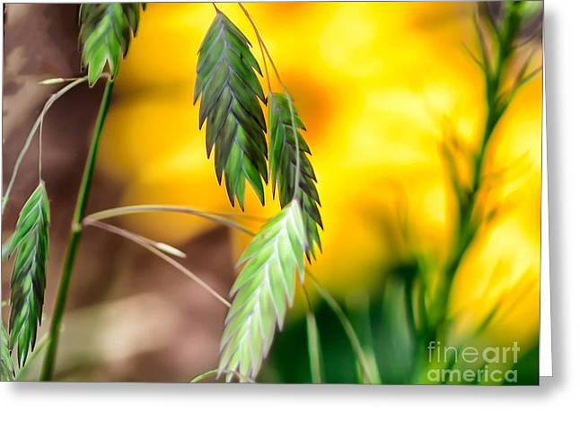 Hanging In Greeting Card by JRP Photography