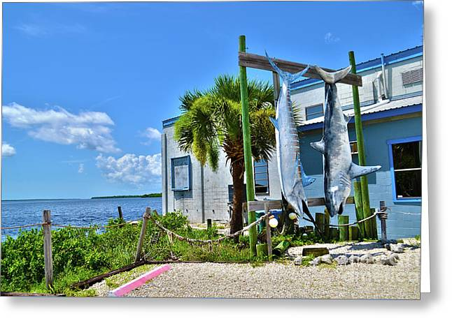 Greeting Card featuring the photograph Hanging In Matlacha Florida by Timothy Lowry