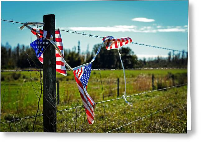 Hanging On - The American Spirit By William Patrick And Sharon Cummings Greeting Card by Sharon Cummings