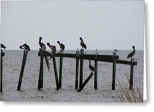 Greeting Card featuring the photograph Hanging Out With Friends by Beth Vincent