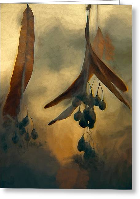 Hanging  Seed Pods Greeting Card