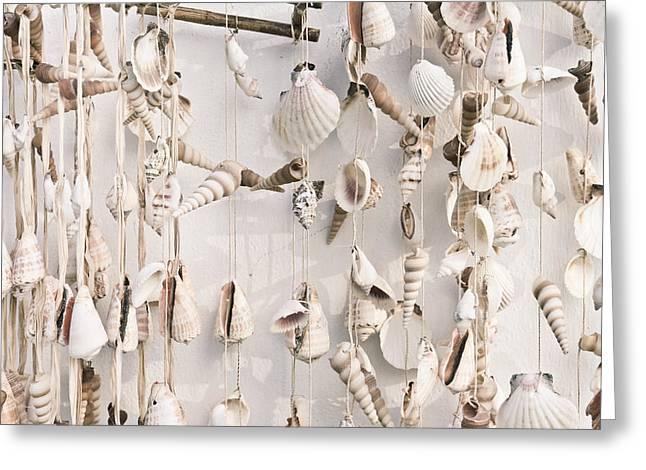 Hanging Shells Greeting Card by Tom Gowanlock