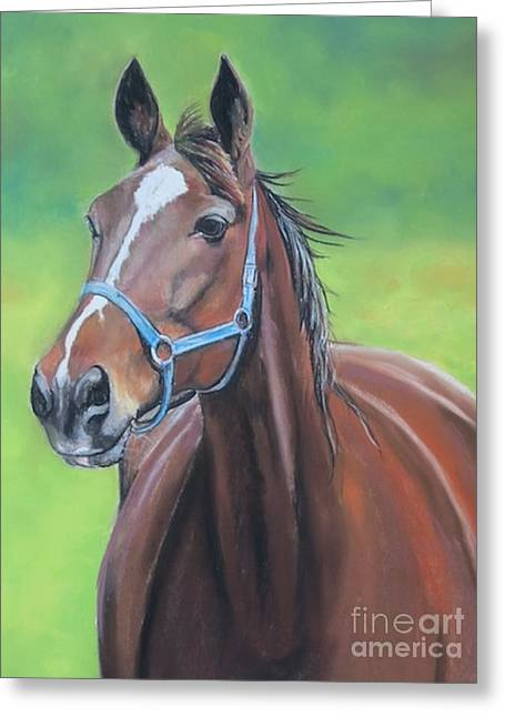 Hanover Shoe Farm Horse Greeting Card by Charlotte Yealey