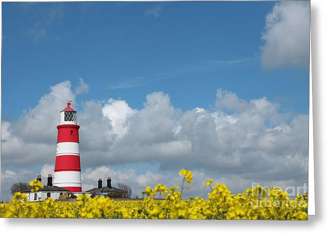 Happisburgh Lighthouse With Oil Seed Rape In Flower Greeting Card by Paul Lilley