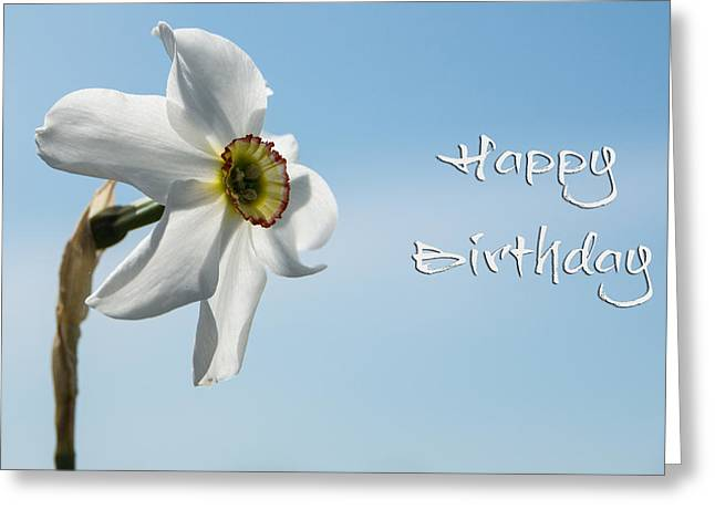 Happy Birthday Daffodil Greeting Card