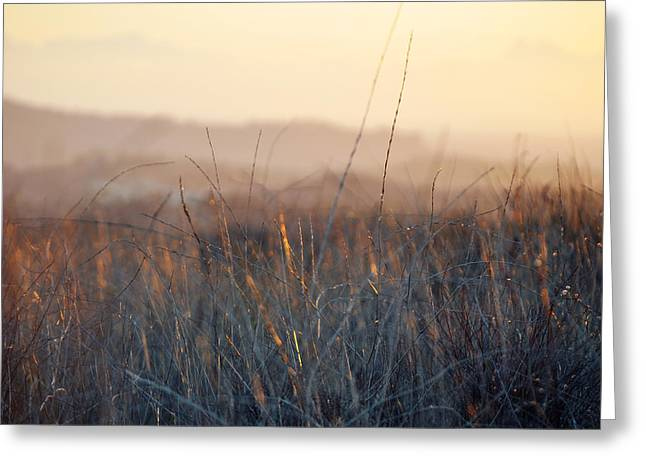 Greeting Card featuring the photograph Happy Camp Canyon Magic Hour by Kyle Hanson