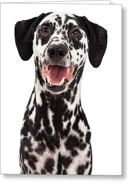 Happy Dalmatian Dog Smiling Greeting Card by Susan Schmitz