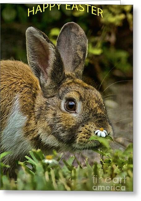 Happy Easter Greeting Card by Anne Rodkin